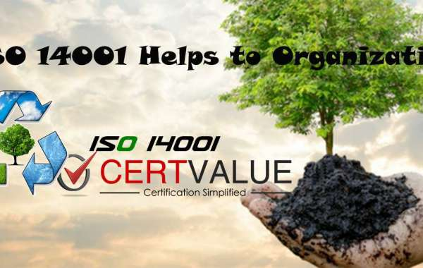How ISO 14001 implementation in Singapore can helps reduce energy consumption?